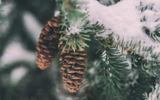 Spirituality and the Seasons of Our Lives